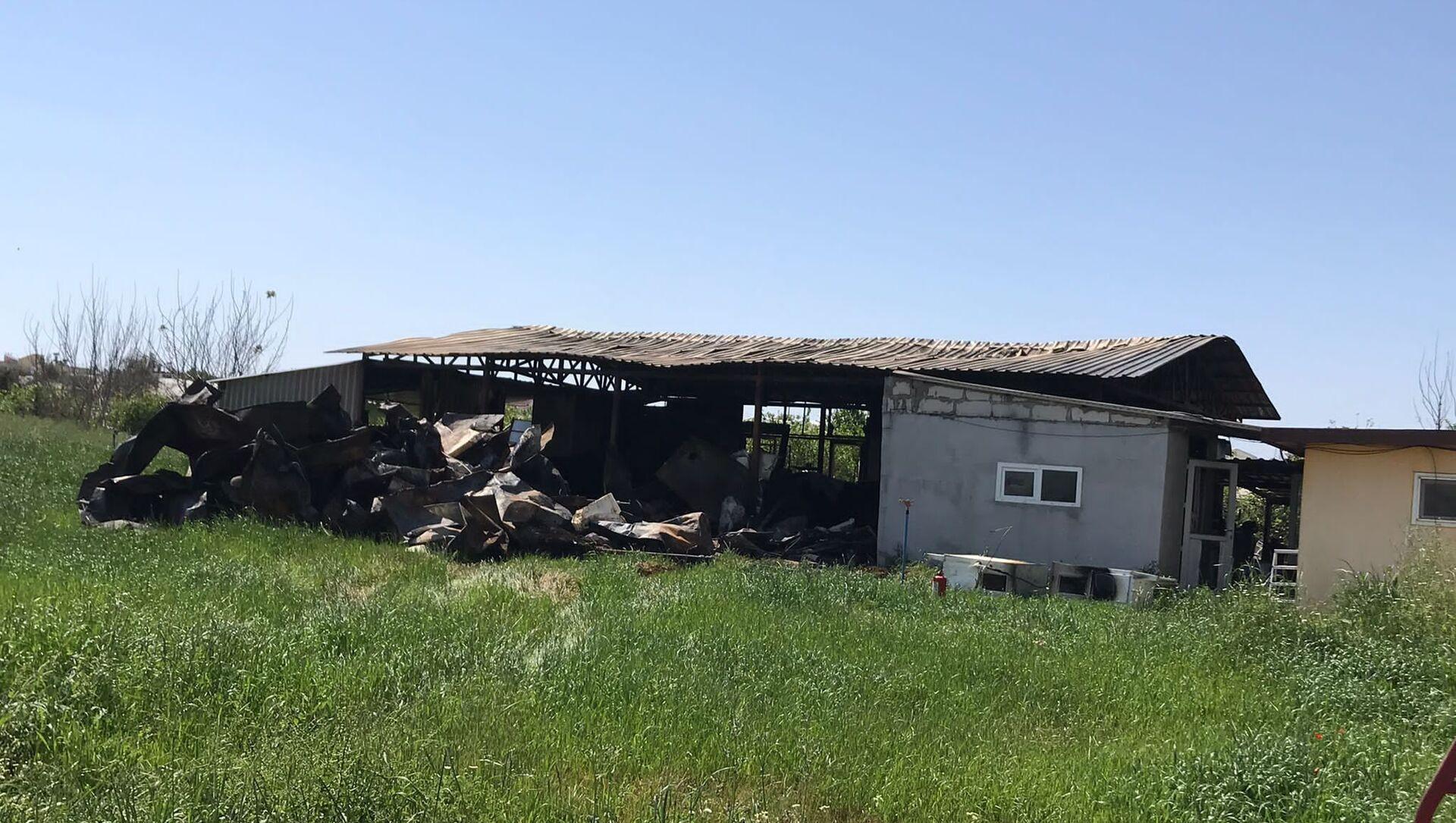 Antalya'da çekirge üretim merkezinde yangın: Anaç böceklerin tamamı yandı - Sputnik Türkiye, 1920, 26.04.2021