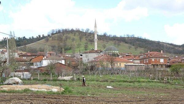 Köy / altın - Sputnik Türkiye