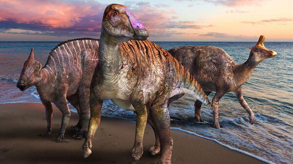 Ördek gagalı dinozor, fosil, Japonya - Sputnik Türkiye
