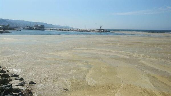 Mudanya'da denizde salya etkili oluyor - Sputnik Türkiye