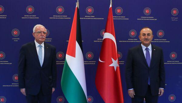 Mevlüt Çavuşoğlu - Riyad el-Maliki  - Sputnik Türkiye