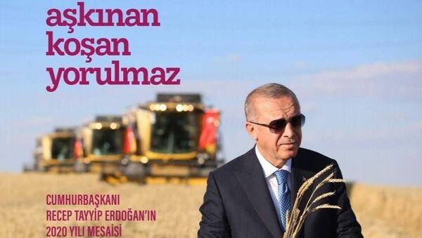 Cumhurbaşkanı Recep Tayyip Erdoğan'ın 2020 yılındaki mesaisi 'Aşkınan Koşan Yorulmaz' isimli kitapta anlatıldı. - Sputnik Türkiye