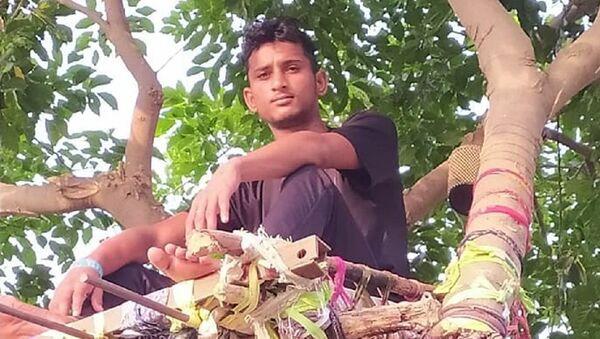 Hindistan'da koronavirüs testi pozitif çıkan genç, ağaç dalında kendine 'izolasyon yatağı' yaptı - Sputnik Türkiye