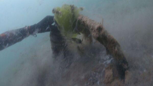 Suların daha iyi filtrelenmesi ve arıtılması gerektiğini vurgulayan İsa Şahintürk, Deniz salyaları sürekli arttığı zaman yok olma süreleri de uzuyor. Bu şekilde devam ederse deniz salyaları yok olmaz. Suların daha iyi filtrelenmesi ve arıtılması gerekir dedi. - Sputnik Türkiye