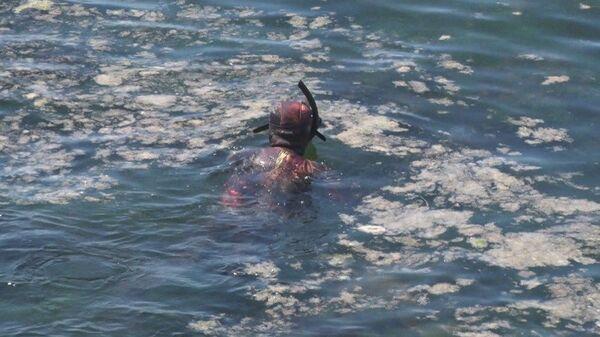 Şahintürk,  Denizin altında balıkları gördüğümüzde ilerliyoruz. Suda çok kötü bir koku oluyor. Bazı bölgelerden atık bırakılıyor suya. Böyle olduğu zaman suya başımızı sokmadan çıkmamız gerekiyor dedi. - Sputnik Türkiye