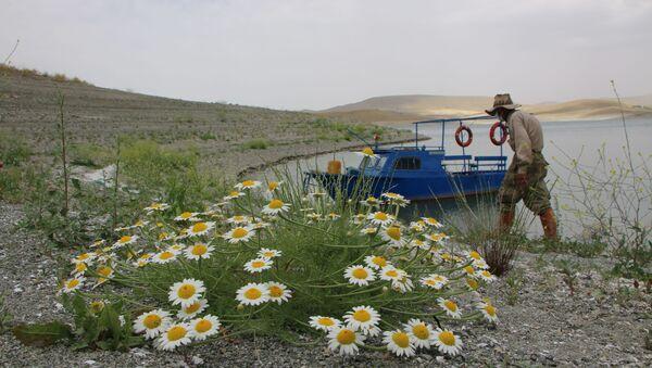 """Tunceli ile Elazığ arasında Keban Baraj Gölü Havzası'ndaki bir adaya 16 yıl önce yerleşerek sessiz sedasız binlerce fidan diken 82 yaşındaki Ziya Abay, kuraklık nedeniyle yarımadaya dönen, son günlerde kar sularının erimesiyle yükselip tekrar ada haline gelen """"Huzur"""" adasına aylar sonra yeniden teknesi ile gitmeye başladı. - Sputnik Türkiye"""