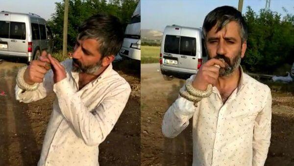 Elazığ'da bir adam yılanı öptü - Sputnik Türkiye
