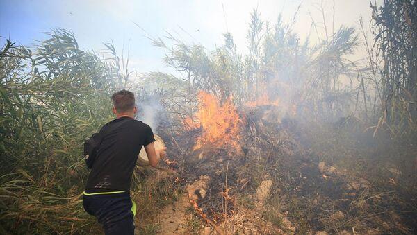 Antalya / orman yangını - Sputnik Türkiye