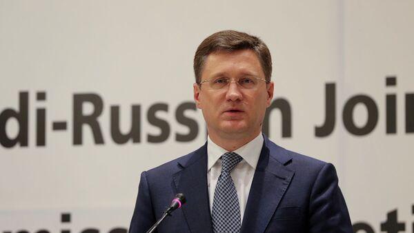 Rusya Başbakan Yardımcısı Alekandr Novak - Sputnik Türkiye