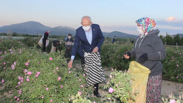 Kılıçdaroğlu işçilerle gül topladı - Sputnik Türkiye