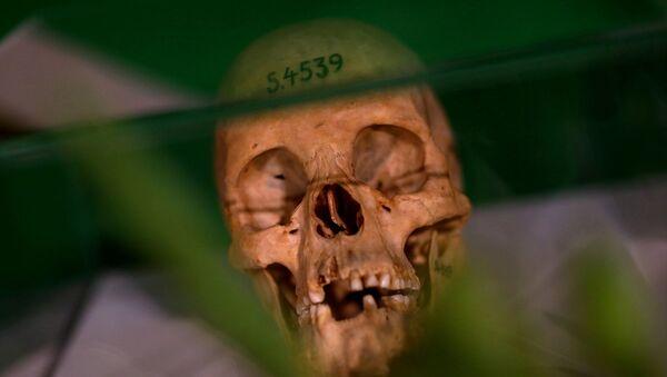 Namibya - soykırım - kafatası - Almanya'nın Namibya'da yaptığı soykırım - Sputnik Türkiye