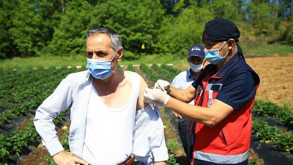Tarlada aşı olan vatandaş - Sputnik Türkiye
