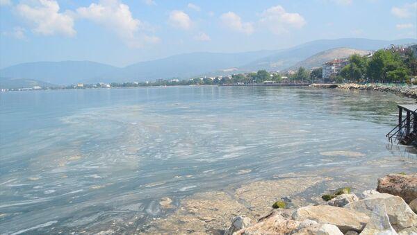 Marmara Denizi'nin güneyinde Balıkesir sınırları içinde kalan sahil boyunda etkili olan deniz salyasının yüzeydeki yoğunluğu azalıyor. - Sputnik Türkiye