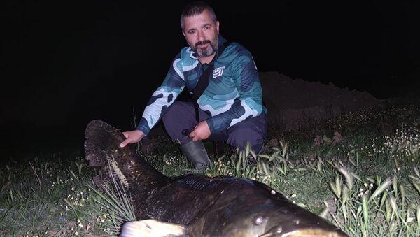 Dev yayın balığı yakaladılar: Ölçüp, hatıra fotoğrafı çekildikten sonra yaşam alanına bıraktılar - Sputnik Türkiye