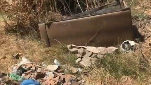 Edirne'nin Keşan ilçesinde, içindeki hurda demiri almak için ateşe verdiği kanepenin alevleri ormana sıçrayan ve yaklaşık 4 hektar alanın kül olmasına sebep olan şahıs, 155 bin TL para cezasına çarptırıldı. - Sputnik Türkiye