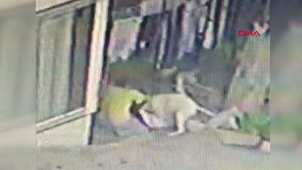 İstanbul Başakşehir'de 16 yaşındaki çocuğa pitbulllar saldırdı: 56 dikiş atıldı - Sputnik Türkiye
