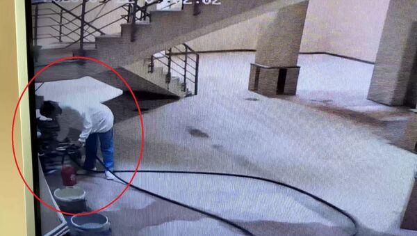 Köpekleri ıslatıp kovalayan öğretim görevlisi S.G.K.-Ankara - Sputnik Türkiye