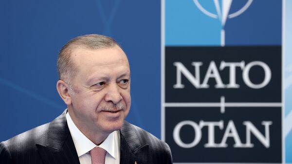 Recep Tayyip Erdoğan- NATO - Sputnik Türkiye