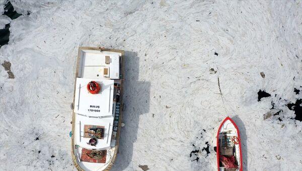 Marmara Denizi sahillerinde görülen ve rüzgarın etkisiyle kıyılara sürüklenen müsilajın (deniz salyası) Tarihi Gelibolu Yarımadası'ndaki yoğunluğu drone kamerasına yansıdı. Kentte etkili olan rüzgarla yön değiştiren müsilaj, Tarihi Gelibolu Yarımadası kıyılarında etkili oldu. Eceabat'ta Çamburnu mevkisi ile Kilitbahir Kalesi, Barut İskelesi, Rumeli Mecidiye Tabyası bölgelerinde yoğunlaşan müsilaj, Şehitler Abidesi ve Morto Koyu'nda da etkili olduğu görüldü. - Sputnik Türkiye
