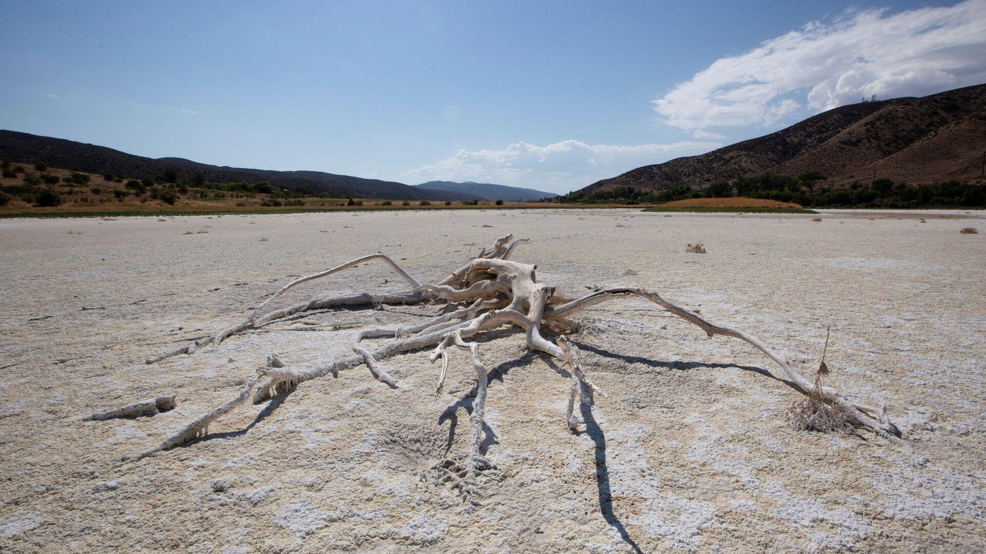 ABD'nin batı yakasında aşırı sıcak-kuraklık döngüsünde kuruyan Elizabeth Gölü (Los Angeles, Kaliforniya) - Sputnik Türkiye, 1920, 20.09.2021