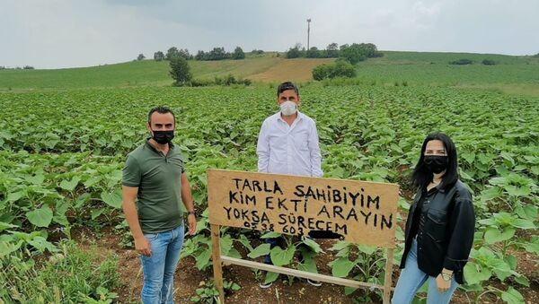 Bursa'da bir çiftçinin tarlasına kendisinden habersiz ayçiçeği ekildi: 'Başka ülkede yaşayamam' - Sputnik Türkiye