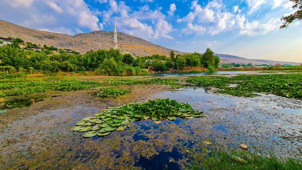 Kahramanmaraş'ta bulunan Nilüfer Gölü ve çevresinde bulunan nilüfer çiçeği kirlilik nedeniyle yok olma tehlikesi karşı karşıya kalırken, gölün koruma altına alınması istendi. - Sputnik Türkiye