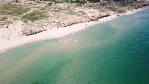 Şile Alacalı Sahili, kahverengi deniz - Sputnik Türkiye
