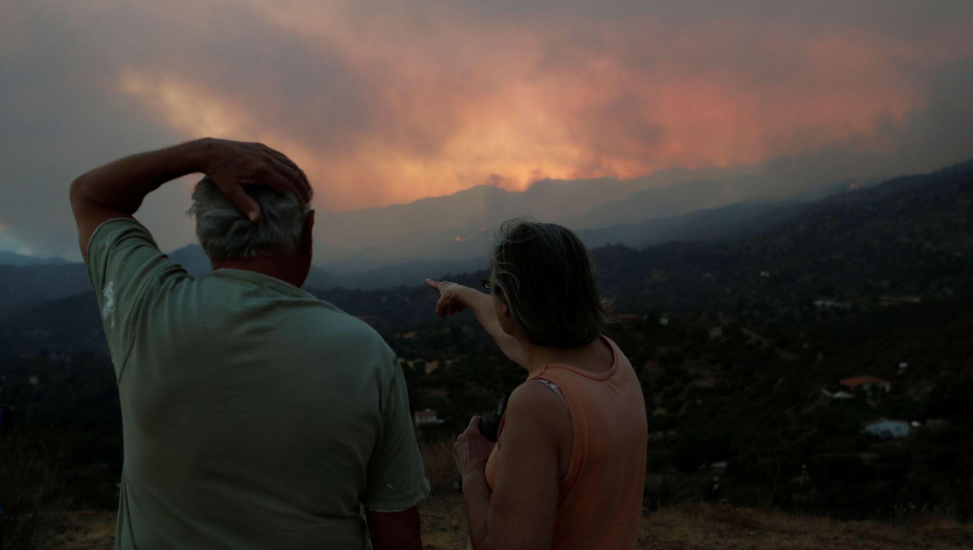 Güney Kıbrıs'ta Larnaka'nın ormanlık bölgesine yayılan yangına endişeyle bakan bir çift (3 Temmuz 2021) - Sputnik Türkiye, 1920, 04.07.2021