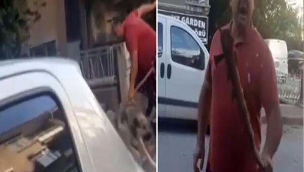 Sokak hayvanlarını besleyen hayvansevere tehdit: 'Bir daha kemik verdiğini göreyim, yemin ederim seni döverim' - Sputnik Türkiye