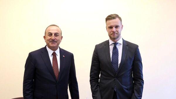 Litvanya Dışişleri Bakanı Gabrielius Landsbergis, Dışişleri Bakanı Mevlüt Çavuşoğlu - Sputnik Türkiye