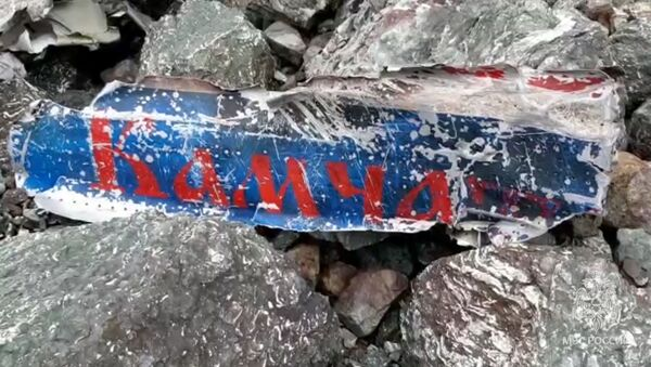 Kamçatka'da düşen uçak - Sputnik Türkiye