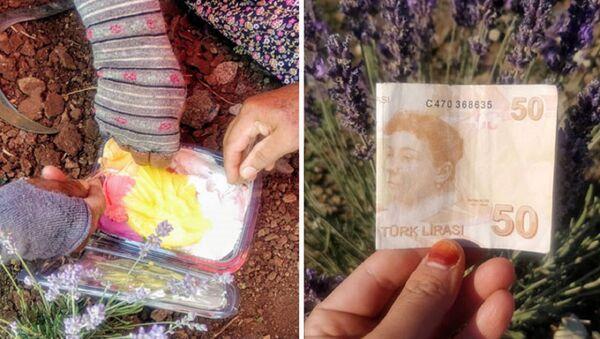 Tarlada çalışan kadın işçilere dondurma alınması için 50 lira bıraktı - Sputnik Türkiye