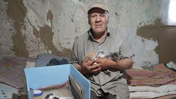 Kastamonu barakasını kedilerle paylaşan 68 yaşındaki Nazmi Özsoy - Sputnik Türkiye