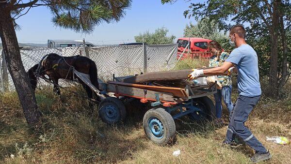 Edirne'nin Keşan ilçesinde bir köpeğe eziyet edildiğinin haberini alan yetkililer, mağdur köpeği teslim almak üzere olayın yaşandığı bölgeye gitti. Yol üzerinde şiddete maruz kalarak at arabası çekmeye zorlanan yaralı atı gören ekipler, iki hayvanı şiddet görmekten kurtardı. - Sputnik Türkiye