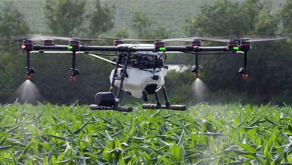 Tarımda verimlilik için insansız hava aracı filoları kurulacak - Sputnik Türkiye