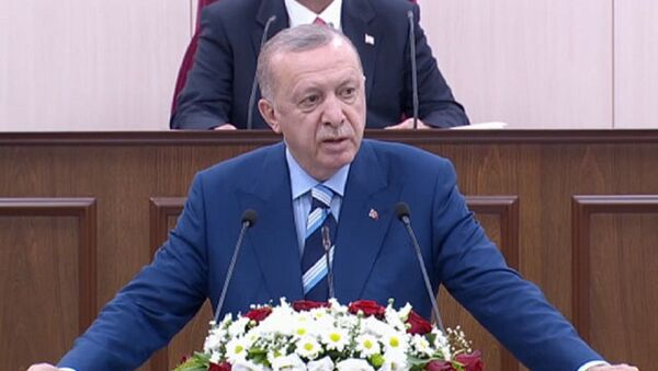 Cumhurbaşkanı Erdoğan Kuzey Kıbrıs meclis - Sputnik Türkiye