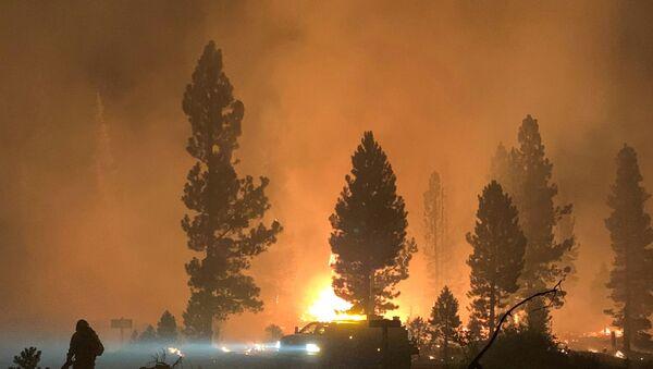 ABD'nin en büyük orman yangını: Los Angeles büyüklüğünde bir alan kül oldu - Sputnik Türkiye
