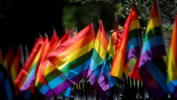 LGBT bayrağı - Sputnik Türkiye