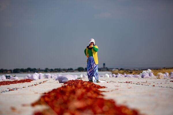Günlük 150-160 ton arasında değişen domatesler, 4-5 gün güneşte kurutulduktan sonra çuvallara konularak toplanıyor.  - Sputnik Türkiye