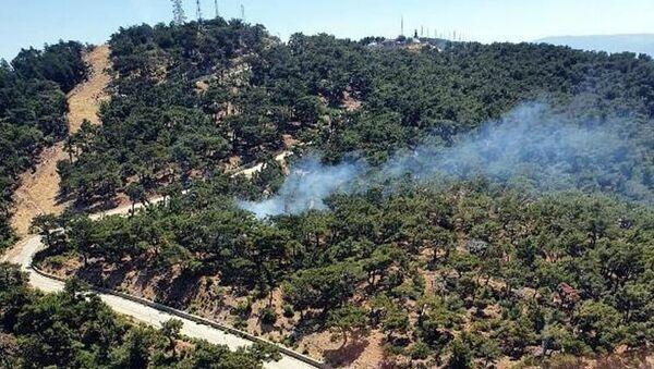 İzmir'de ormanlık alanda yangın - Sputnik Türkiye
