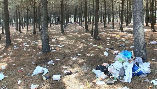 Piknikçilerden geriye çöp yığınları kaldı - Sputnik Türkiye