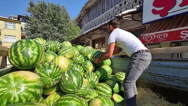 'Hıdıroz' ismi verilen organik karpuz - Sputnik Türkiye