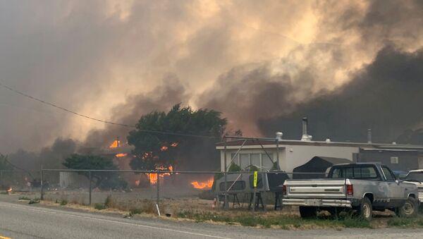 Kanada'da termometrenin tüm zamanların sıcaklık rekoru 49.6 dereceyi görmesine koşut çıkan orman yangınları - Sputnik Türkiye