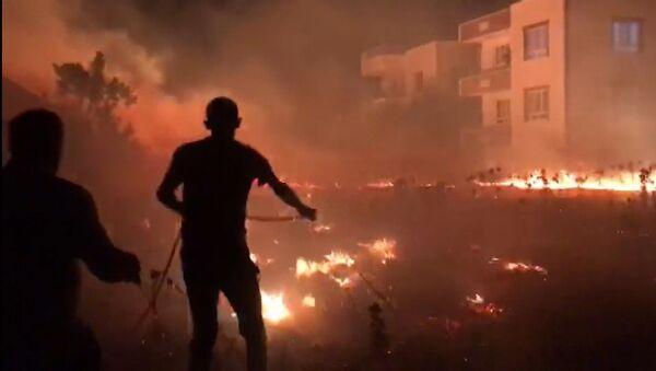 Adıyaman - anız yangınları - Sputnik Türkiye