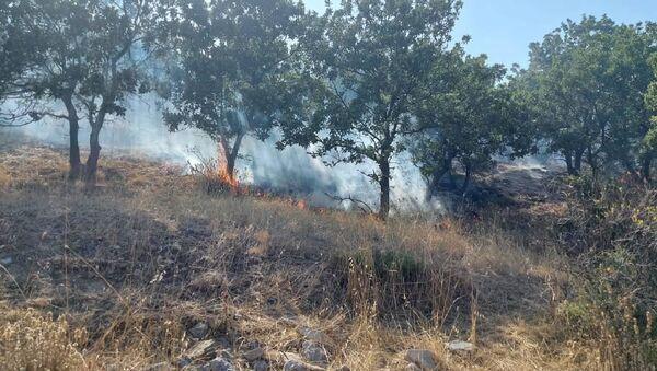 Çanakkale - orman yangını - Sputnik Türkiye