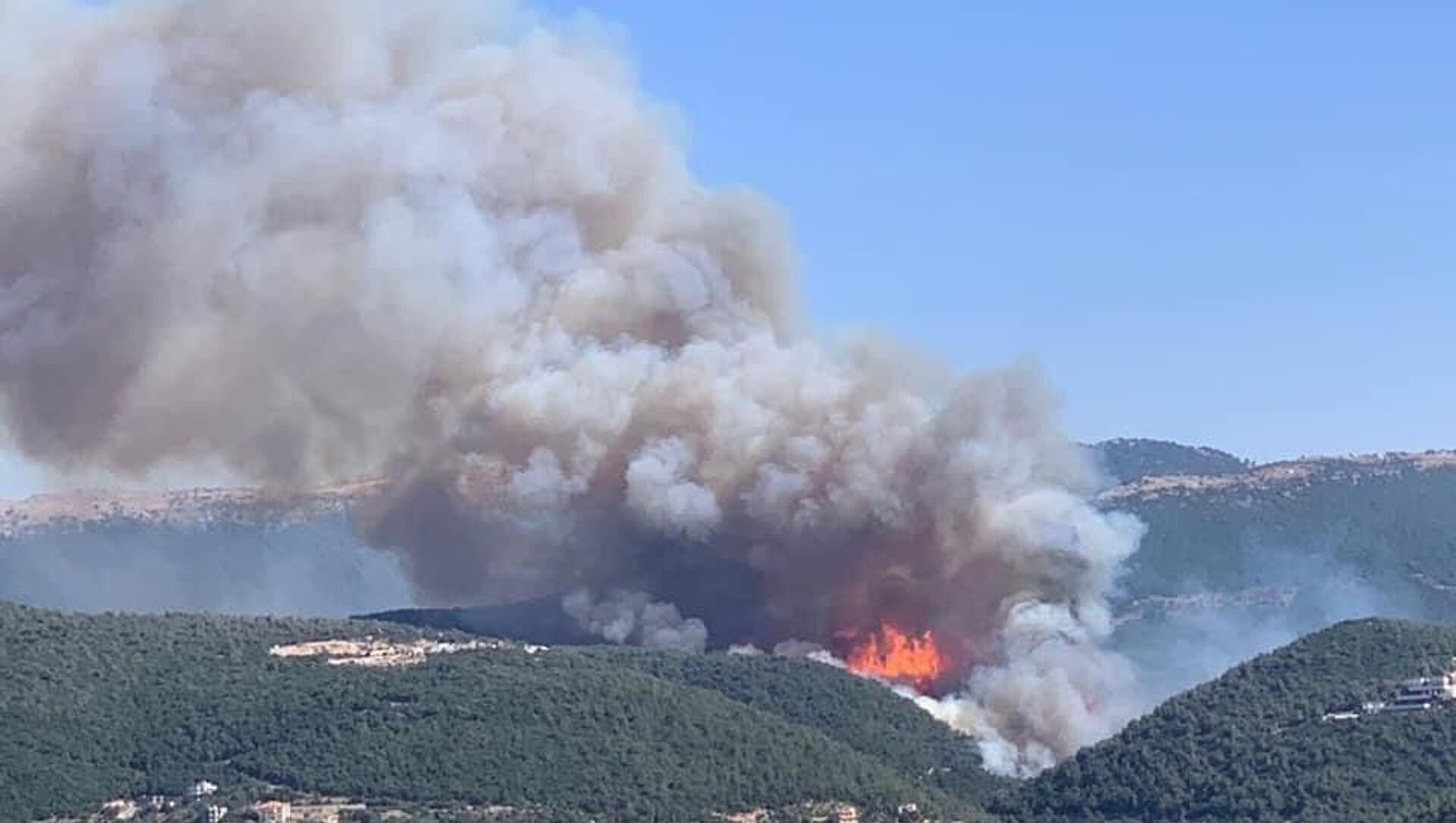 Lübnan'da orman yangını: Evlere ve çiftliklere sıçradı - Sputnik Türkiye, 1920, 28.07.2021