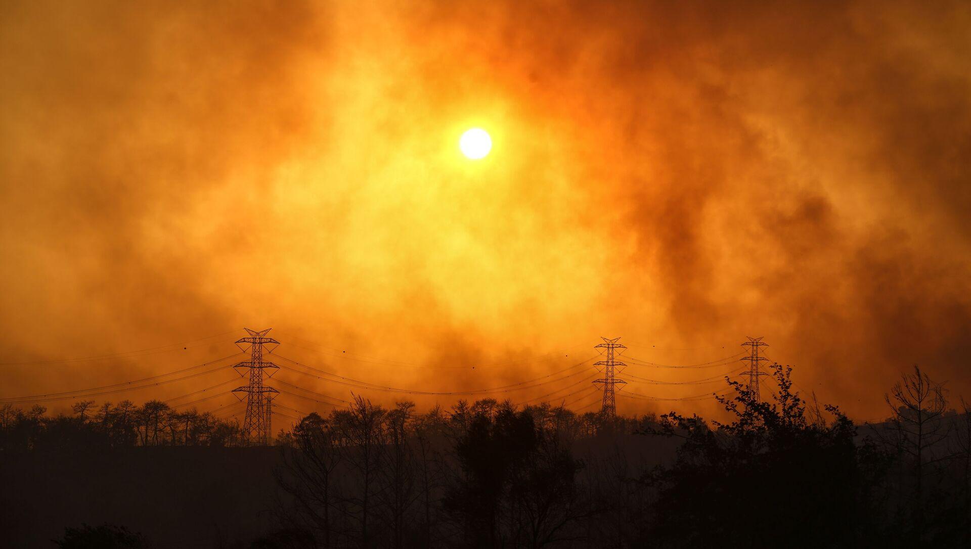 Manavgat yakınlarındaki orman yangınından yükselen dumanlar. - Sputnik Türkiye, 1920, 29.07.2021