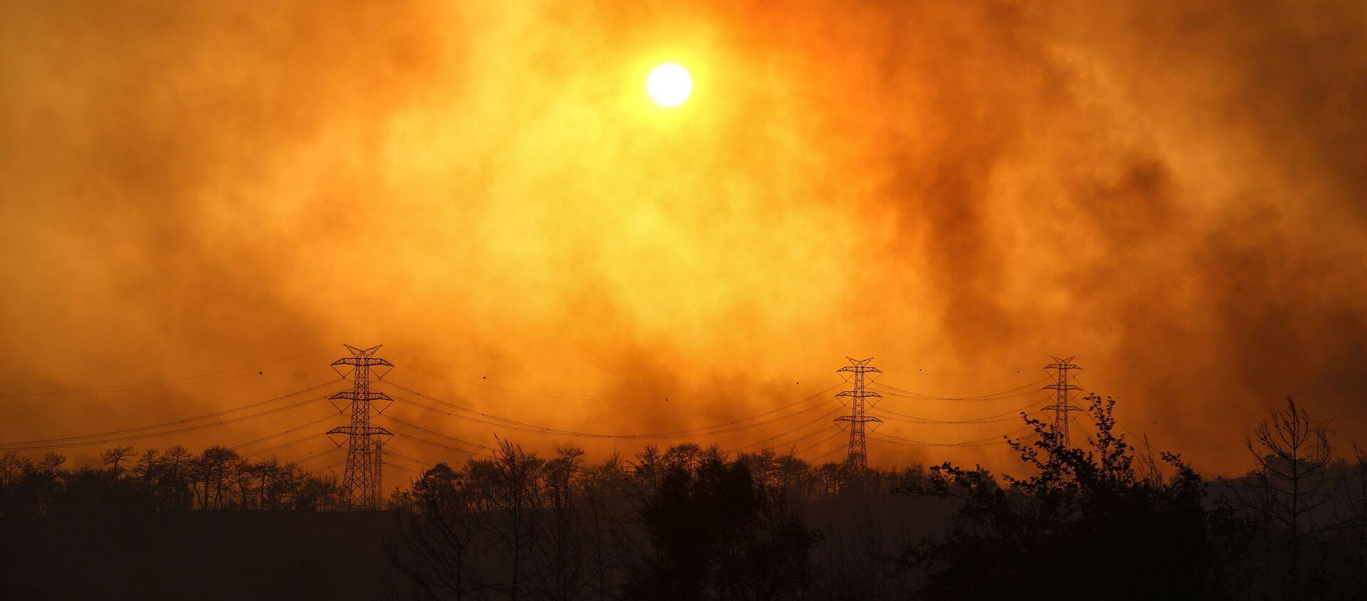 Manavgat yakınlarındaki orman yangınından yükselen dumanlar. - Sputnik Türkiye, 1920, 31.07.2021
