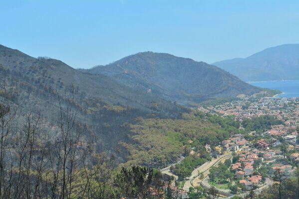 Marmaris'teki orman yangını, dün öğle saatlerinde çıktı. - Sputnik Türkiye