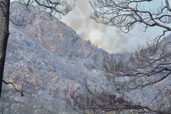Alevlerin başladığı noktaya yakın yerde evleri bulunanlar, yangını komşu çocuklarının çıkardığını öne sürdü. - Sputnik Türkiye